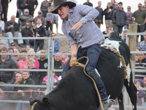 bullride2